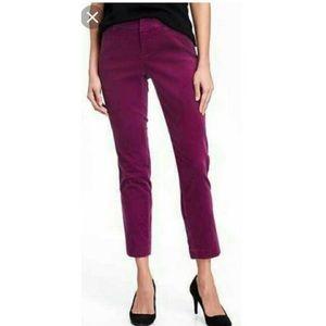 Old Navy Purple Velvet Pixie Ankle Length Pants